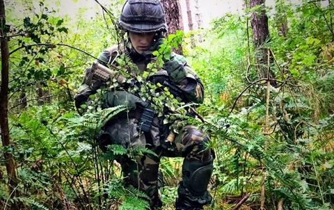Schutter in het bos